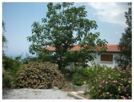 Ruth's home in North Cyprus