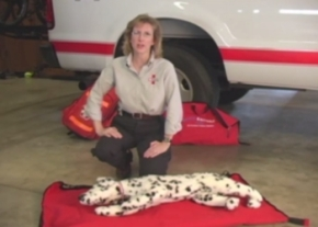 Save your pet with CPR