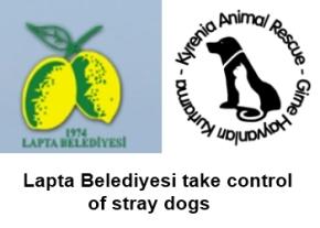 Lapta Belediyesi dog control