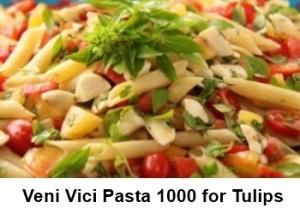 Veni Vici Pasta 1000 for Tulips