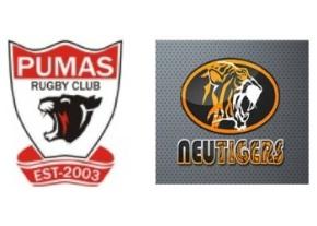 Pumas & Tigers logo image