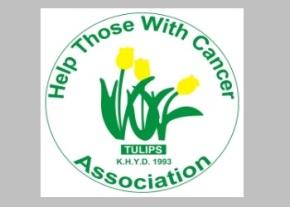Tulips logo image