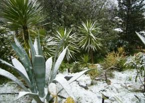 Snow in TRNC