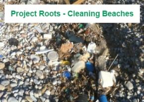 Beach rubbish image