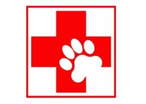 Animal First aid image