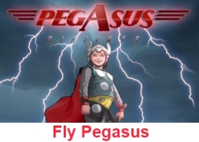 Pegasus Safety Film image
