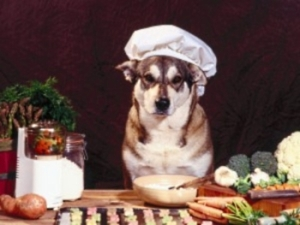 Canine master chef