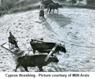 Cyprus Theshing
