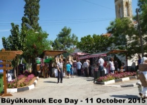 Eco Day image