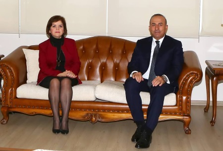 Colak and Cavusoglu