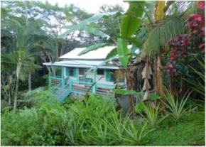 Organic Farm Belize image
