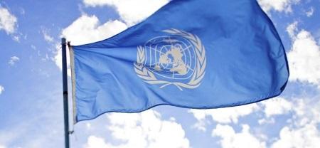 Survey by UNDP