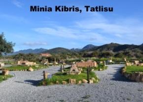 Minia Kibris image