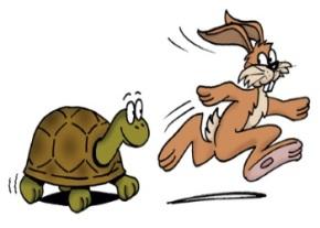 Tortoise and rabbit image