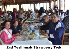 Yesilirmak Strawberry Trek image