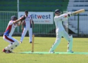 Cricket in action image