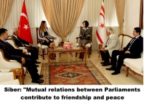 Siber - friendhip and peace image