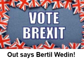 Out says Bertile Wedin