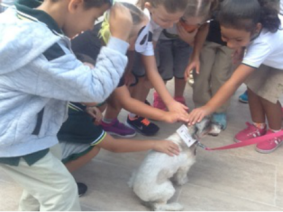 The children meet Annie the dog