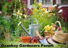 ozankoy-gardeners-forum-image