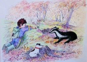 stripey-the-badger-image