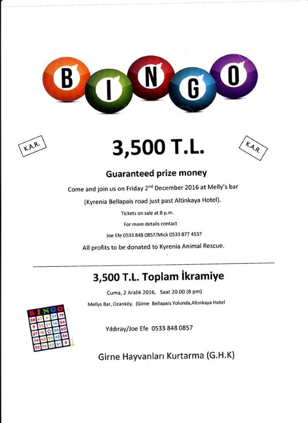 big-prize-bingo