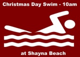 christmas-day-swim-image