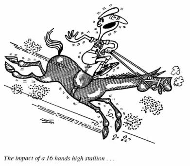 horse-and-rider-cartoon