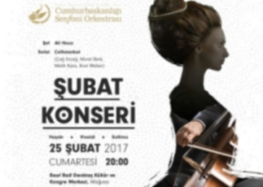 turkish-cypriot-presidential-symphony-orchestra-concerts-image
